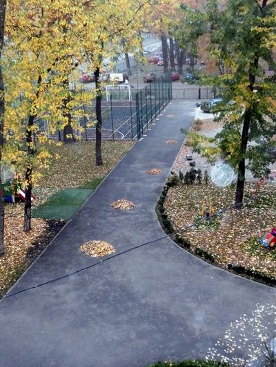 Двір МФШ восени